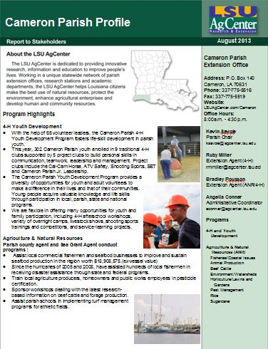 Please click on the image to view the PDF version of the 2013 Cameron Parish Profile.