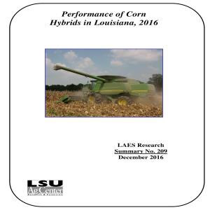 Performance of Corn Hybrids in Louisiana, 2016
