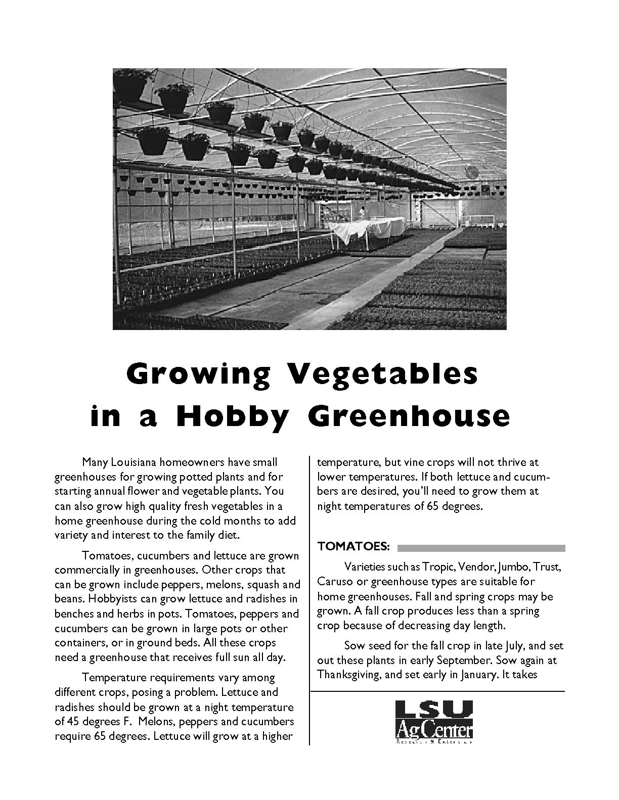 Growing Vegetables in a Hobby Greenhouse