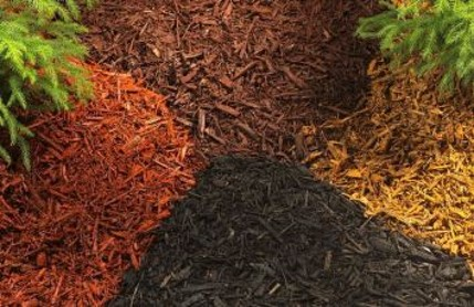 Maximize Mulch And Recycle Yard Waste