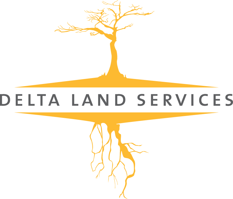 Delta Land Services, LLC