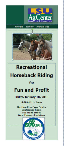 Recreational Horseback Riding for Fun and Profit