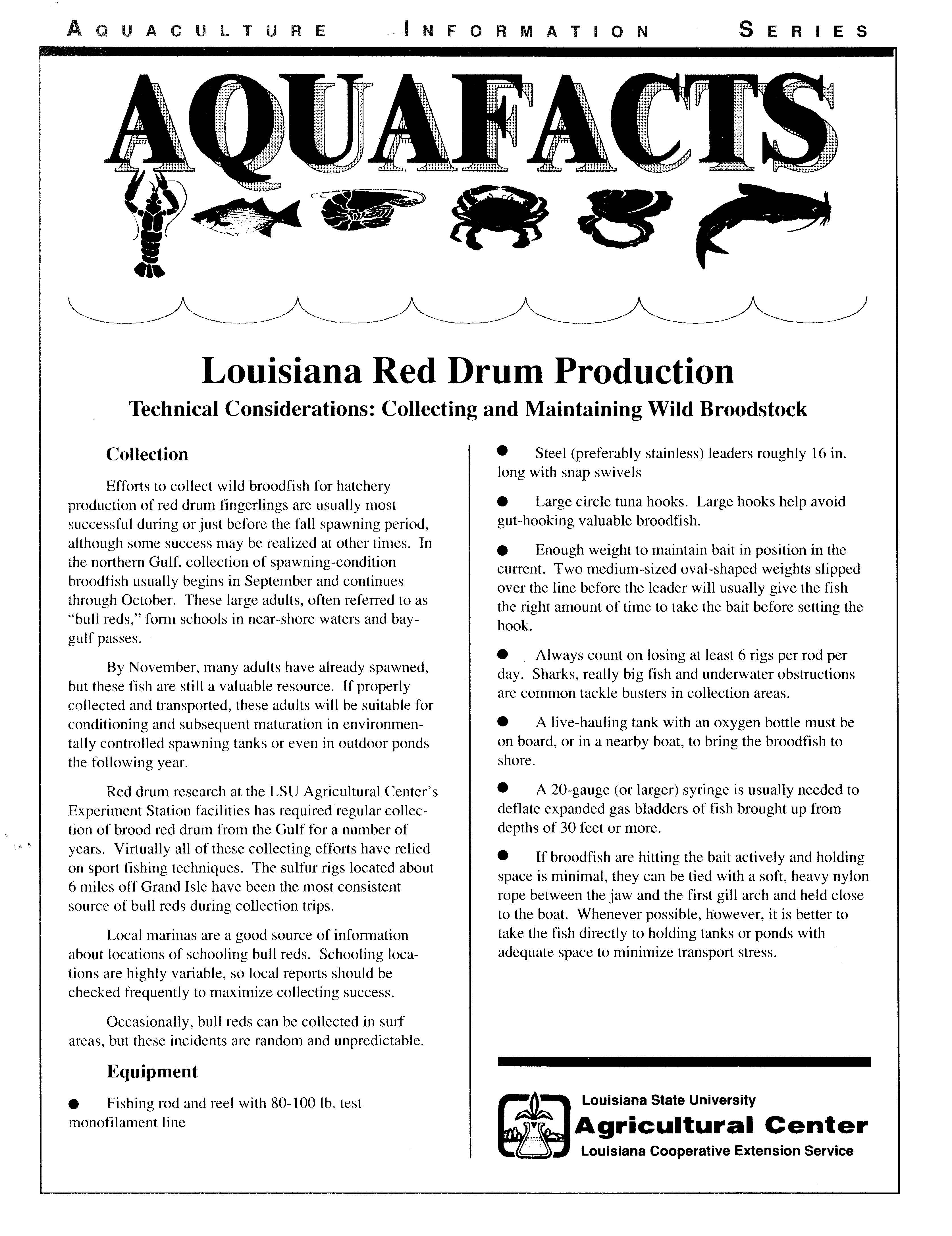 Red Drum Production: Collecting and Maintaining Wild Broodstock
