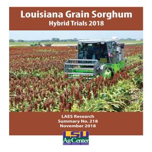 Louisiana Grain Sorghum Hybrid Trials 2018
