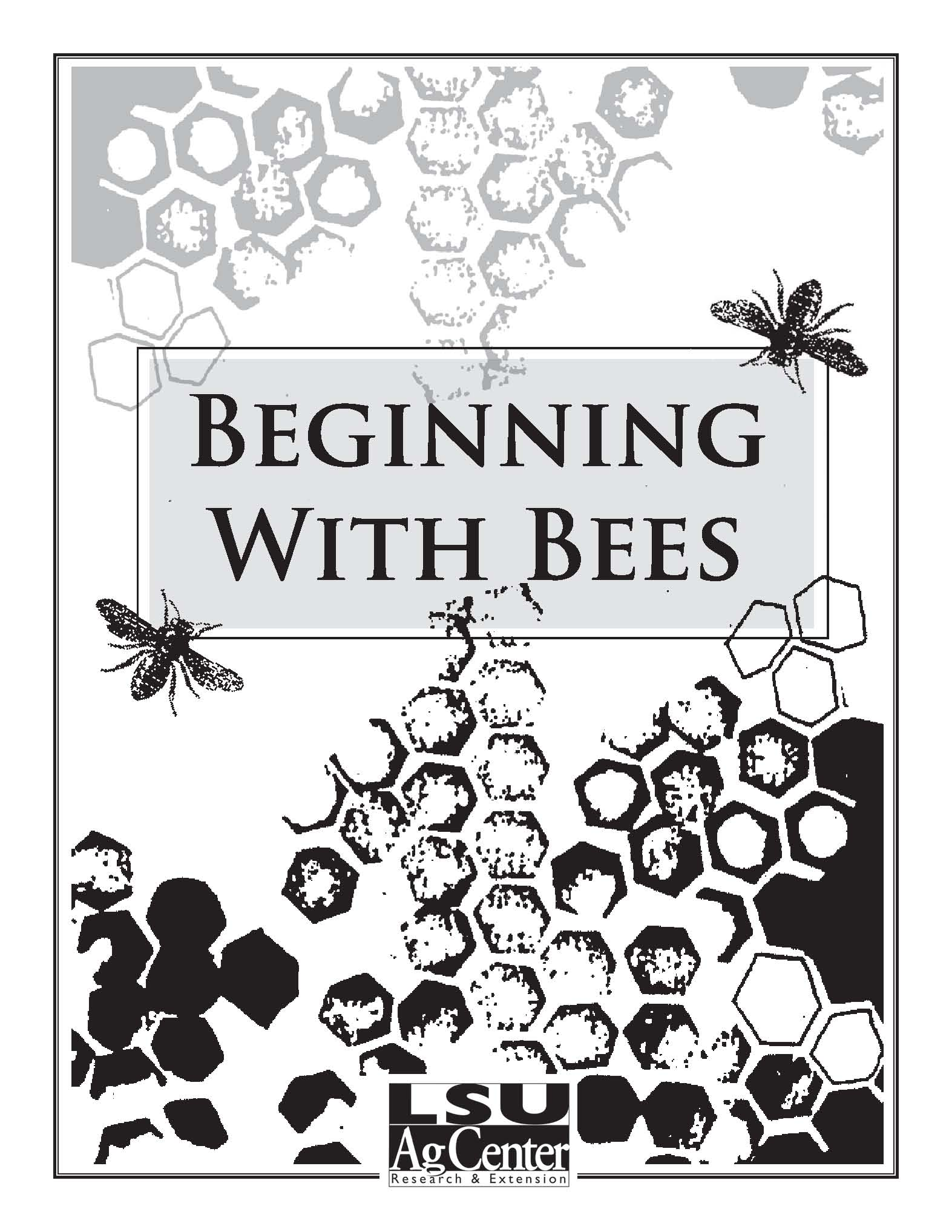 Beginning With Bees