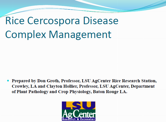 Rice Cercospora Disease Complex Management