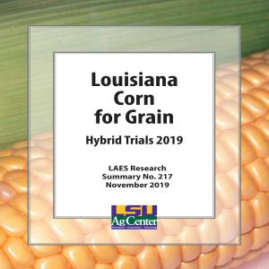 Louisiana Corn for Grain Hybrid Trials 2019