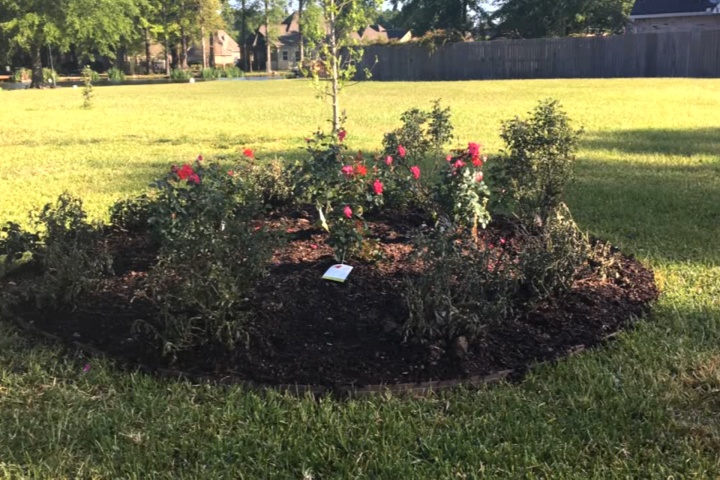 How To Make A Raised Bed In Your Landscape