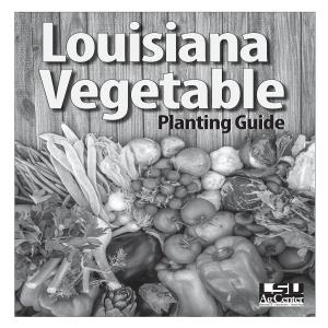 Louisiana Vegetable Planting Guide