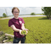 LSU AgCenter launches new website about giant salvinia