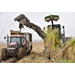 Sugarcane acreage likely to increase in 2019