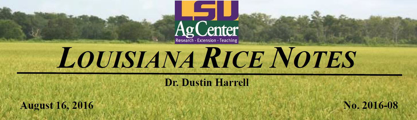 2016 Lousiana Rice Field Notes #8 - Flood Edition