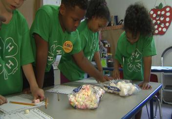 Elementary students enjoy unconventional summer school experience