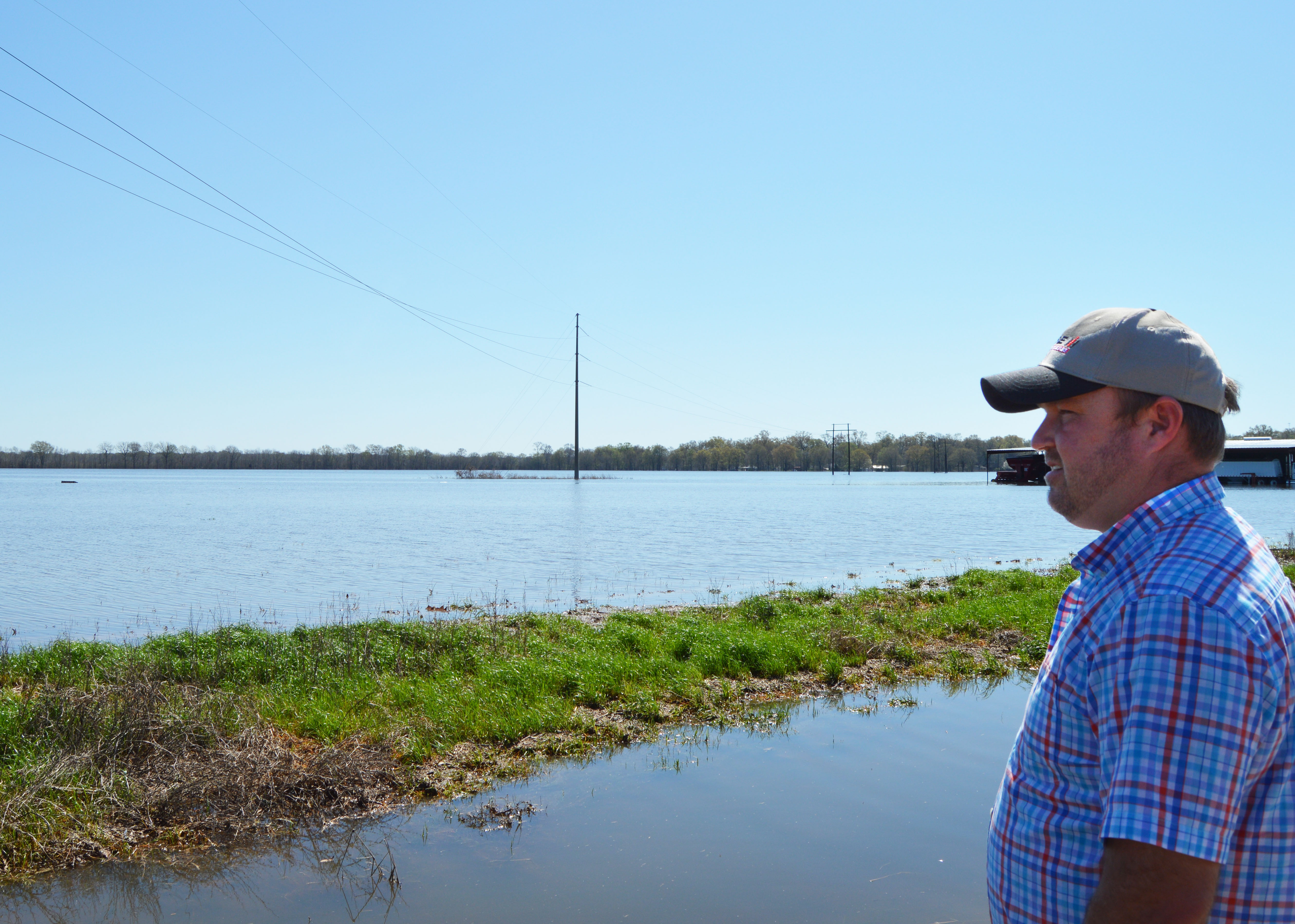 Corn hardest hit by flooding in Louisiana