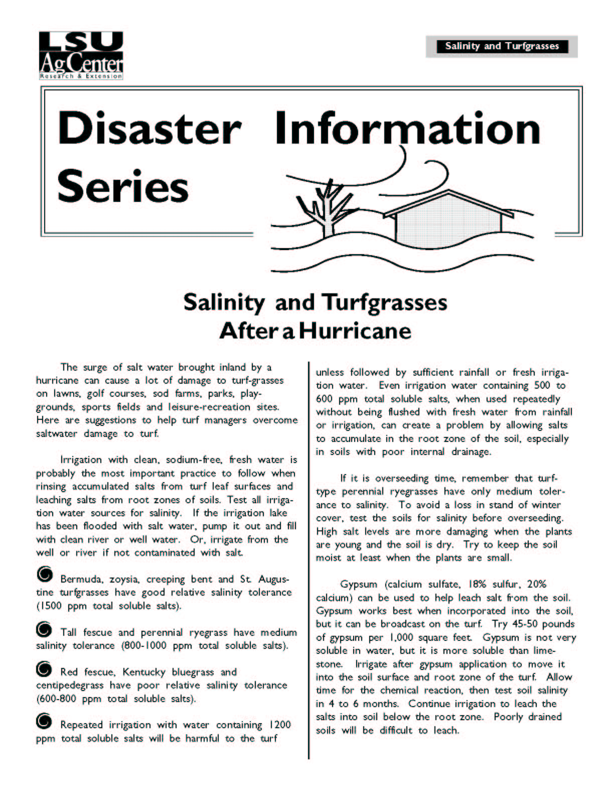 Salinity and Turfgrasses After a Hurricane