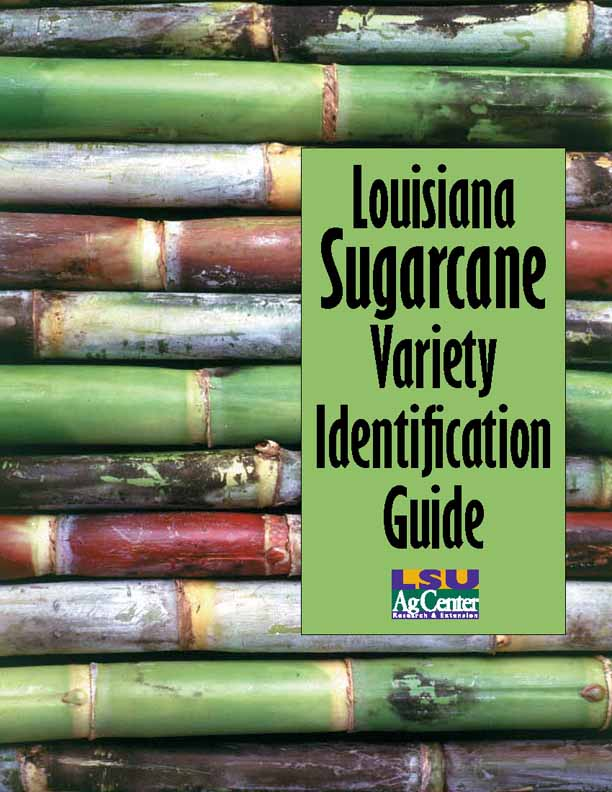 Louisiana Sugarcane Variety Identification Guide