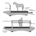 Pervious Concrete as a Flooring Material for Horse Handling Areas