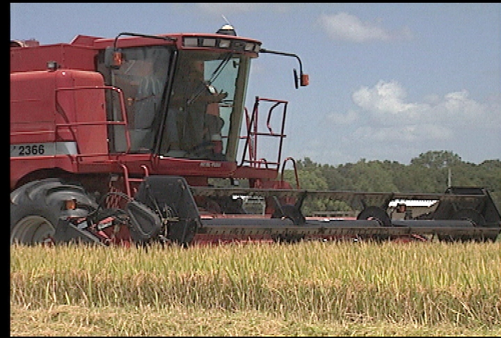 Farmer profits up despite challenging production year