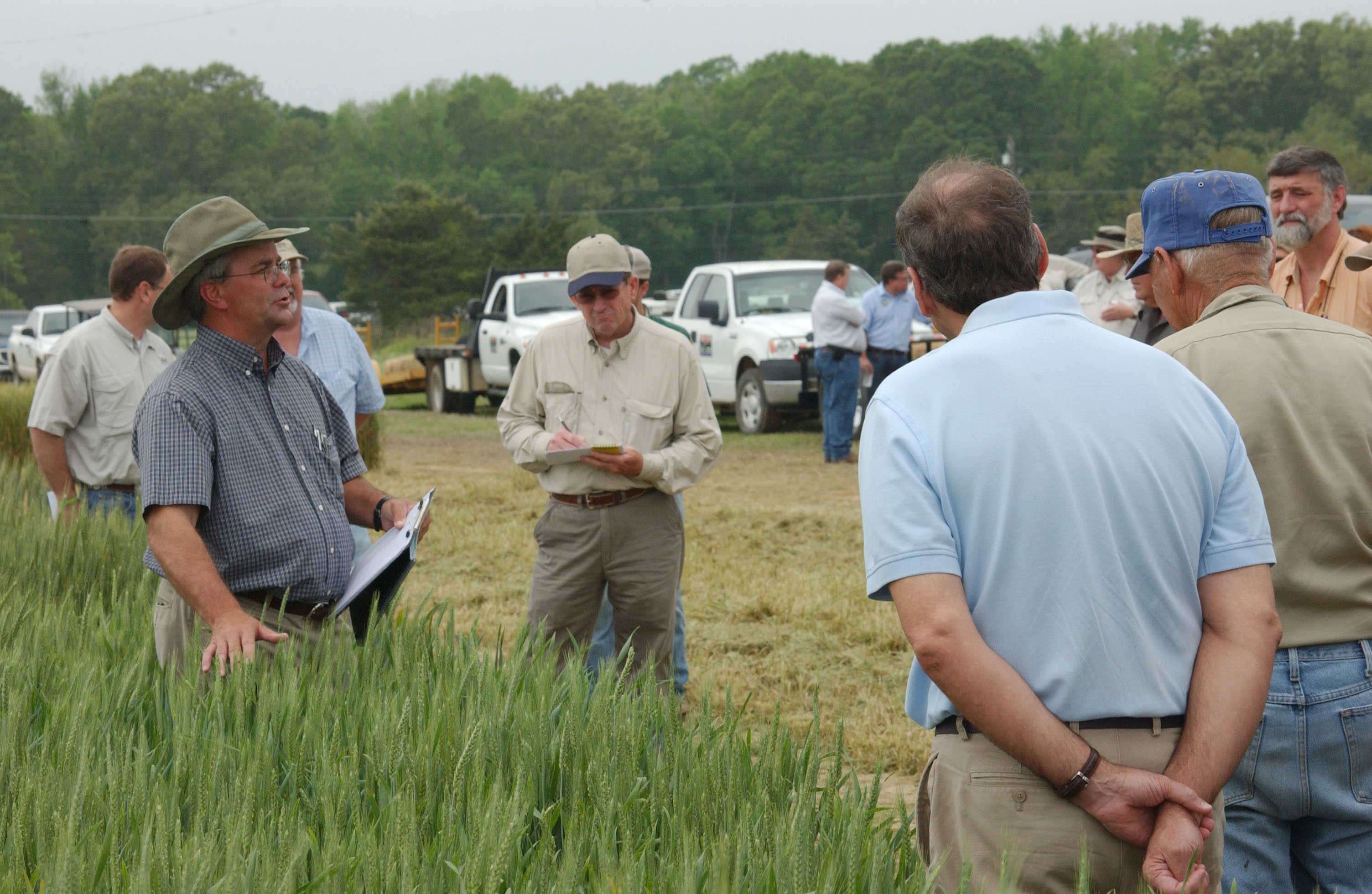 LSU AgCenter wheat breeder Steve Harrison talks to participants at a wheat field day held at