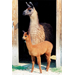 Llama Mamas Give Birth to Alpacas