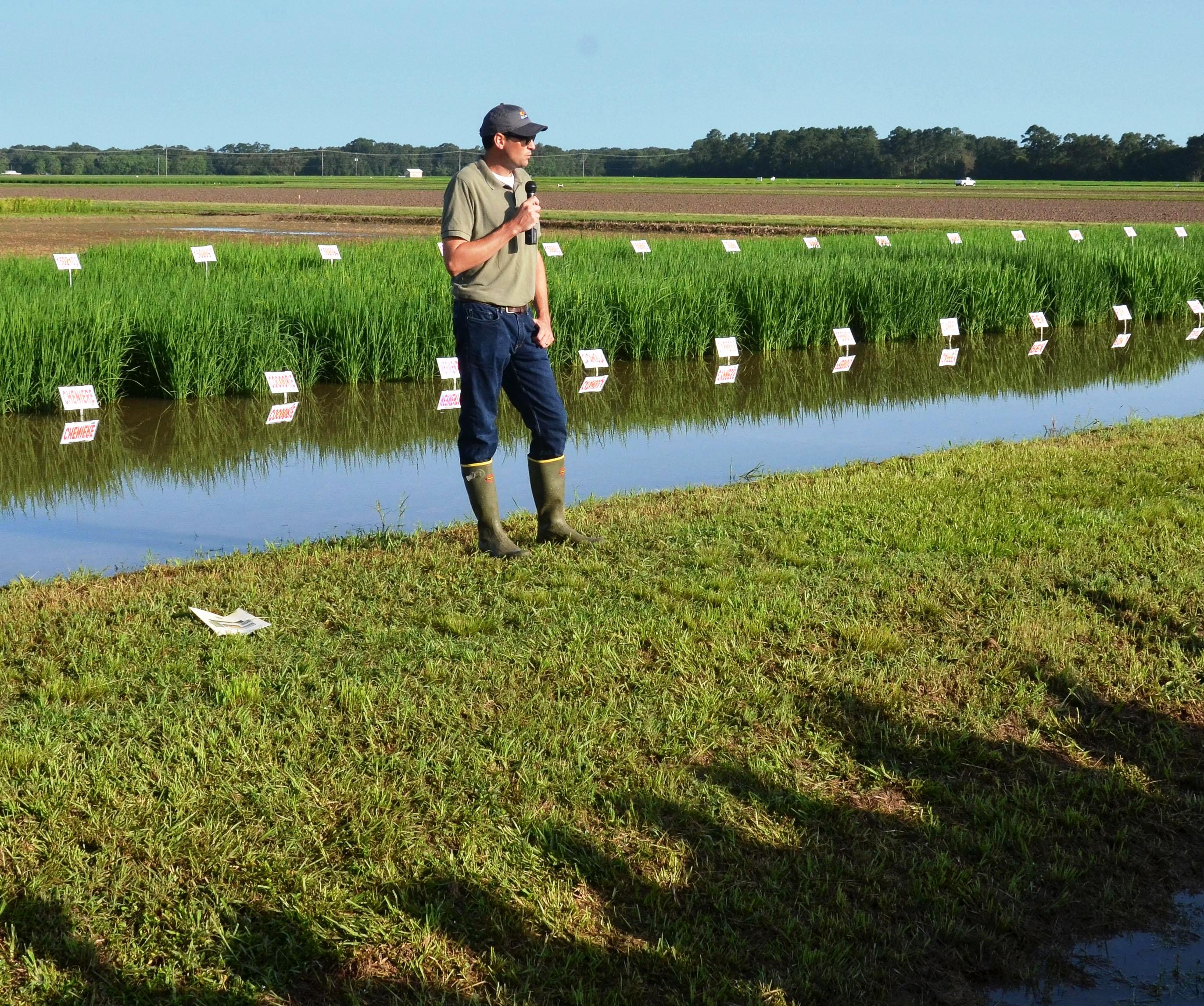 Highlights of the Rice Research Station Field Day - Part 1