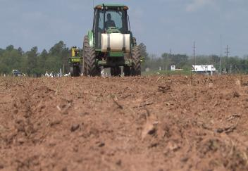 Soybean farmers get a late start in planting