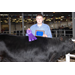 2012 Northwest District Show Results for Red River Parish Livestock