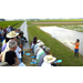 LSU AgCenter Researchers Report On High-Protein Rice, Other Projects During Field Day