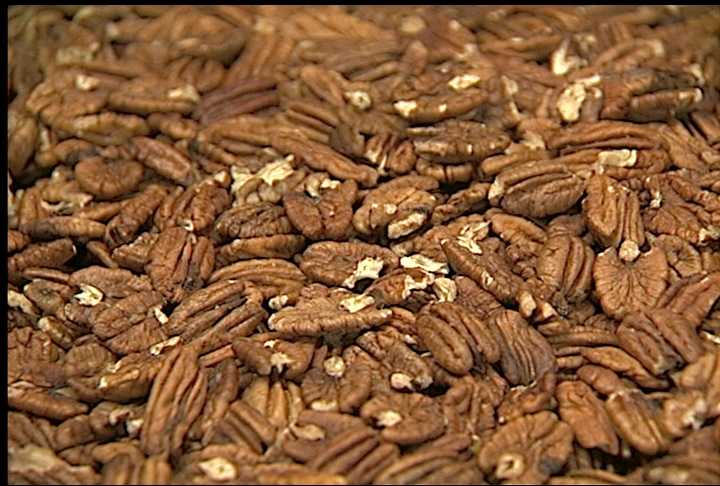 Hurricane-damaged pecan crop showing mixed results across La.