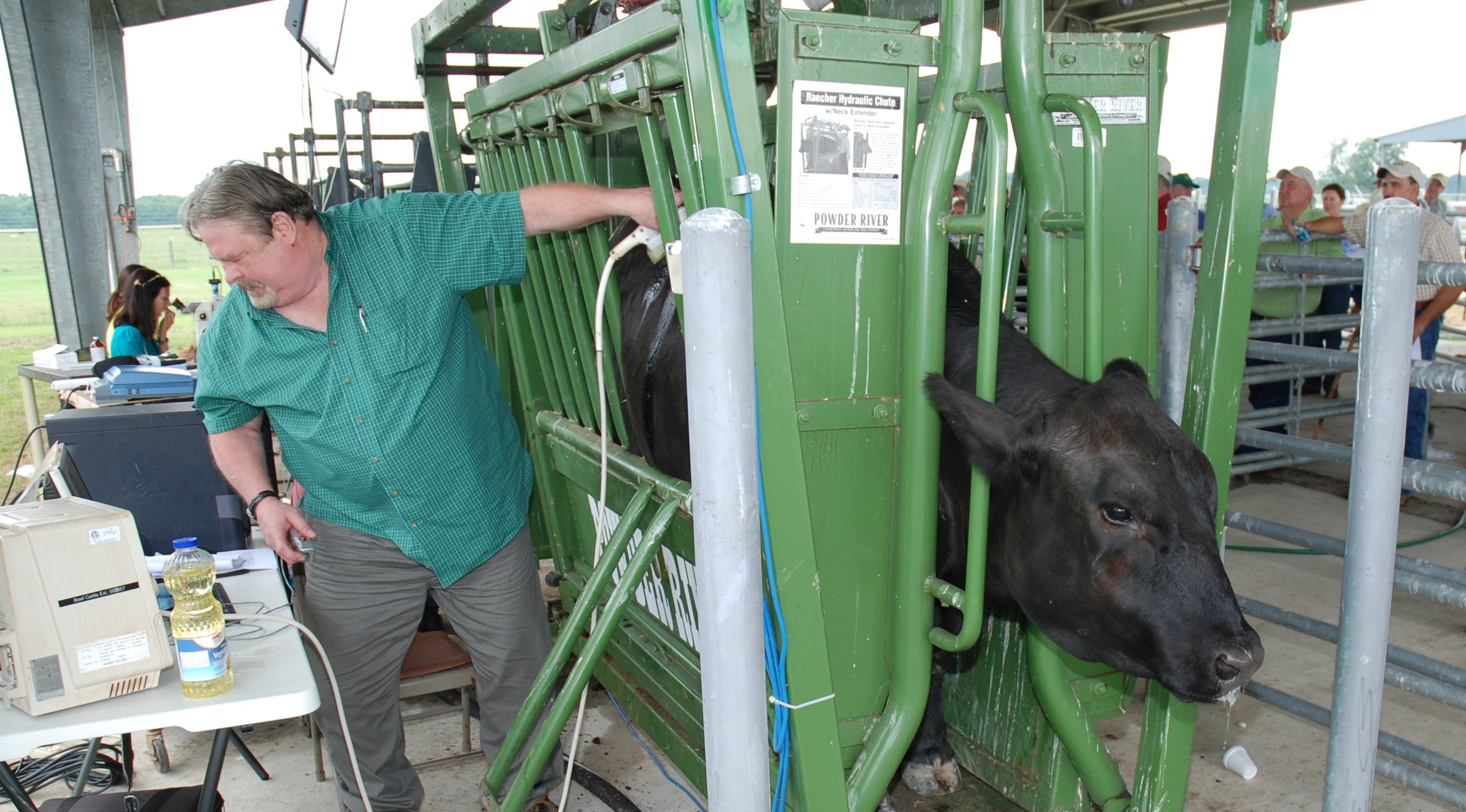 Quality, value discussed at beef field day