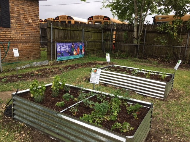 2018 HEALTHY COMM_ Community Garden with Veggie Signs TOM AND HERBS.jpg thumbnail