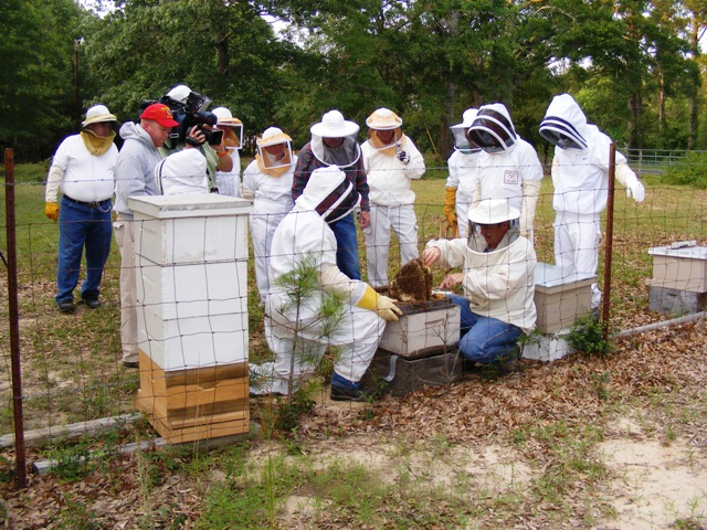 Beekeepers school set for July, August in DeRidder