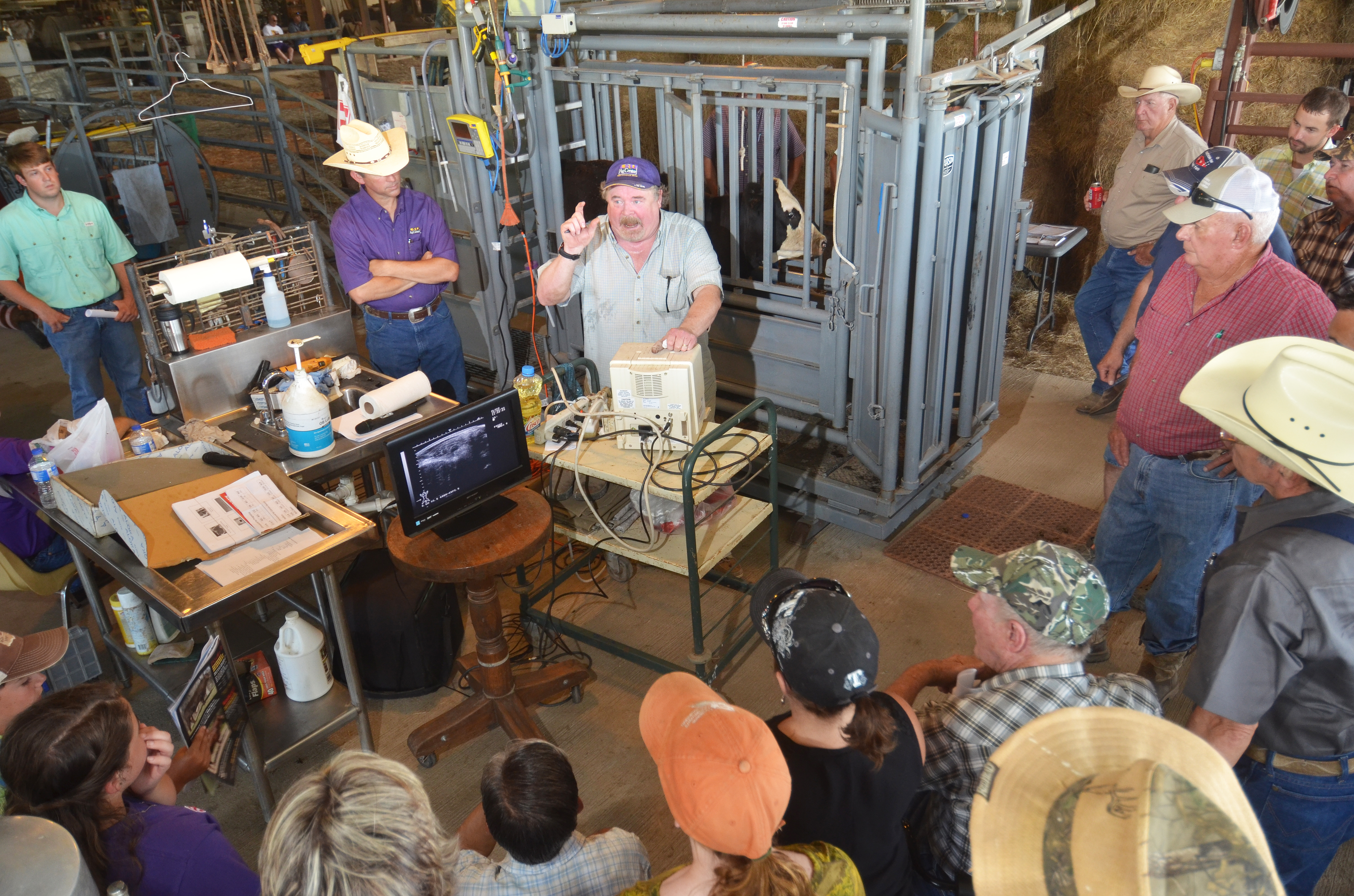 Technology featured at cattle field day