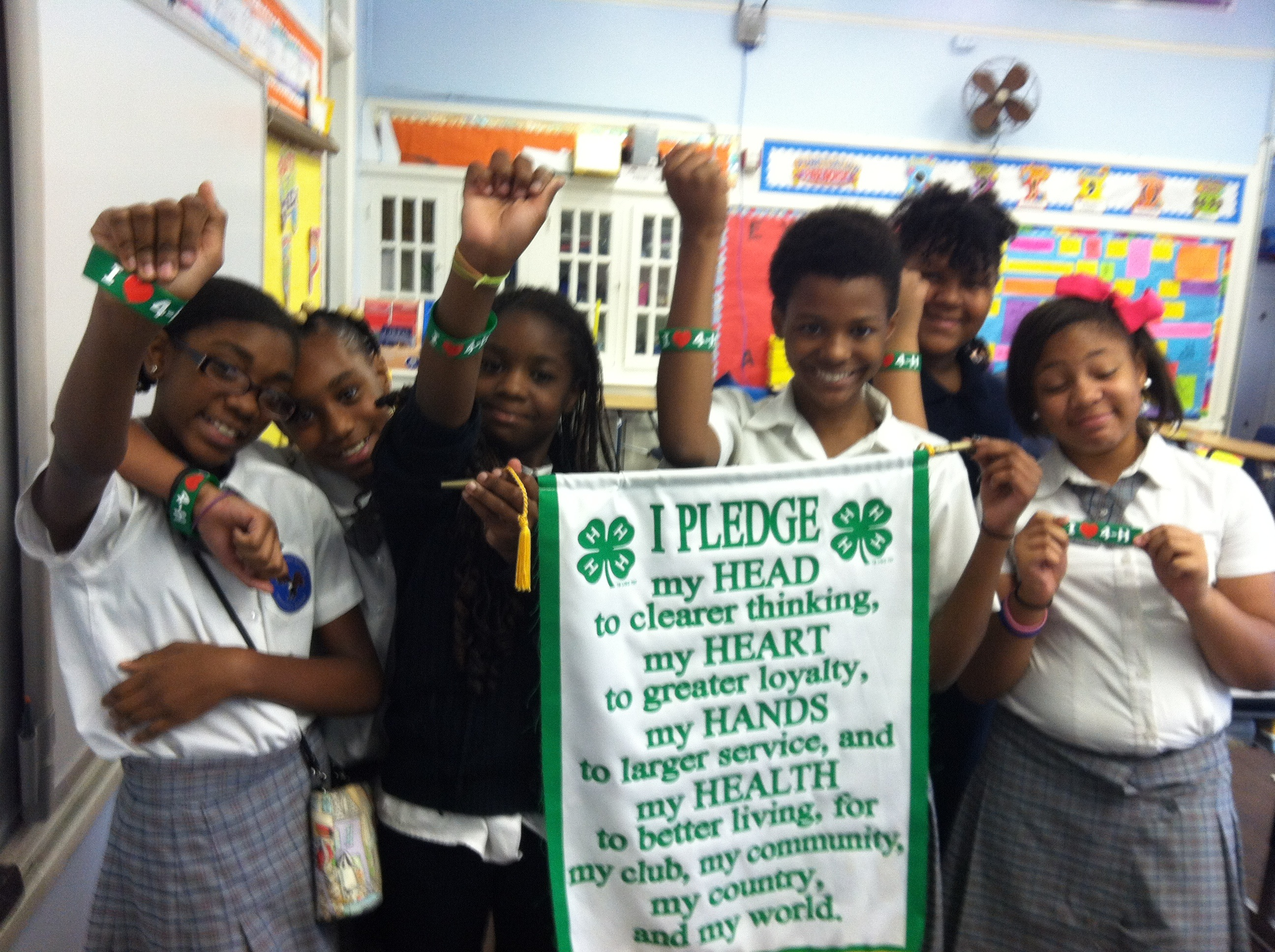 4-H students image