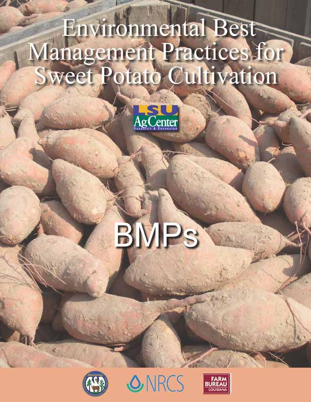 Environmental Best Management Practices for Sweet Potato Cultivation