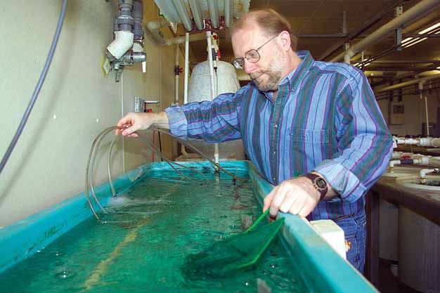 Cryopreservation: A New Industry for Aquatic Species
