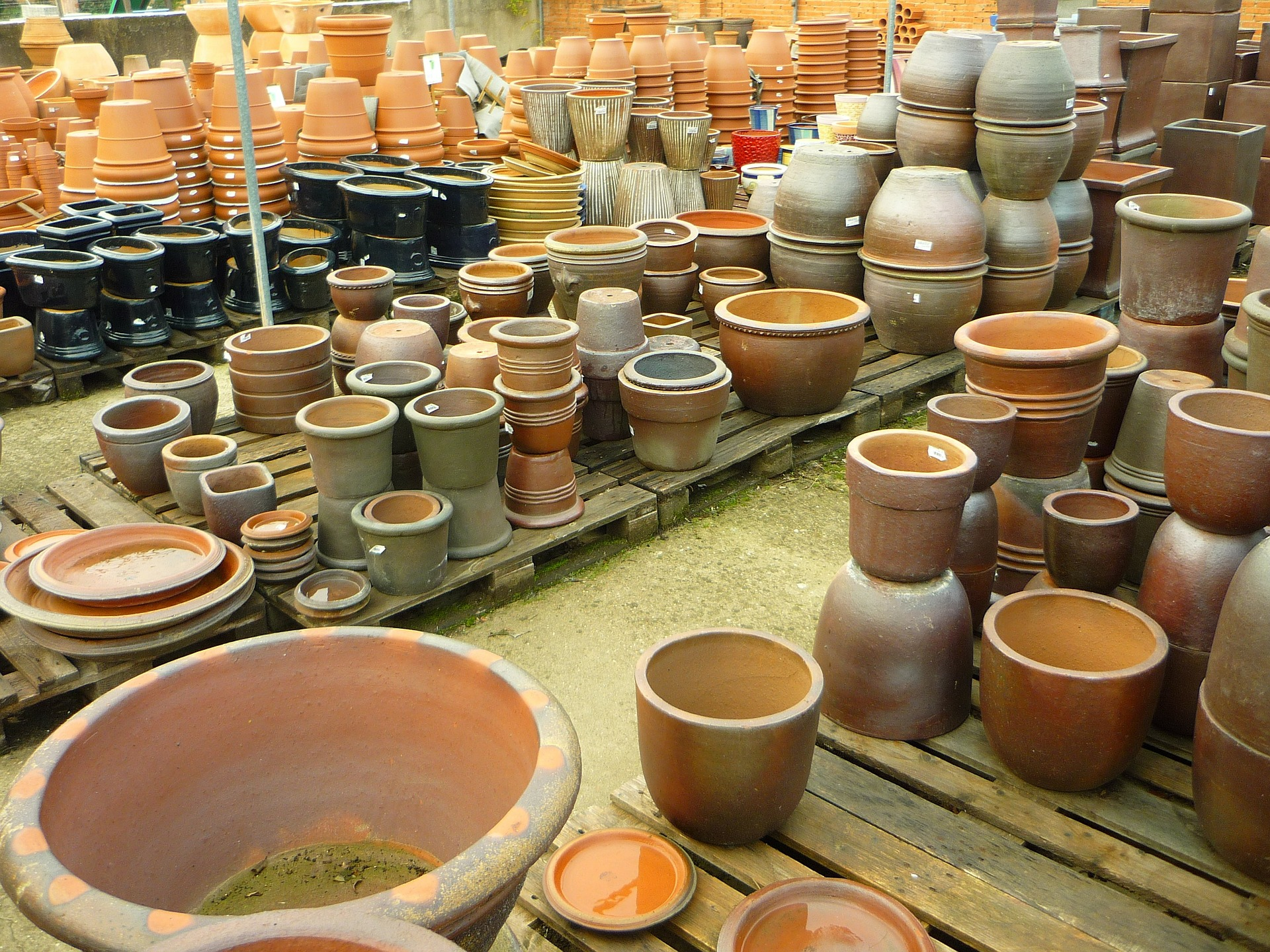 lots of pots.jpg thumbnail