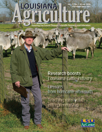Louisiana Agriculture Magazine Winter 2008