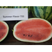 Results of the 2012 Watermelon Variety Demonstration Plot