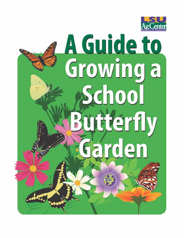 A Guide to Growing a School Butterfly Garden