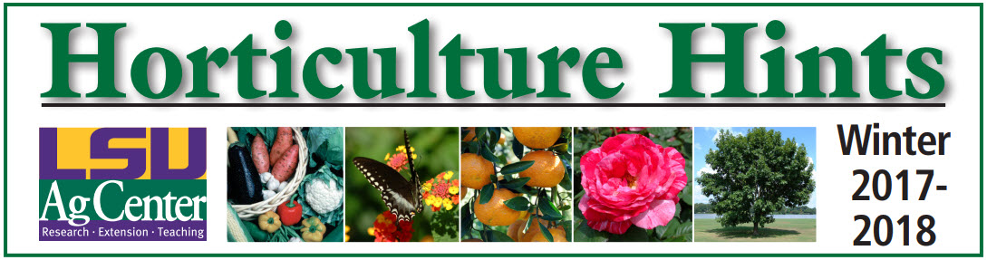 Seasonal Horticulture Hints