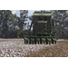Cotton harvest showing disappointing yields