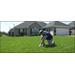 Spring Lawn Fertilizing