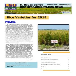 2019 H. Rouse Caffey Rice Research Station Newsletters
