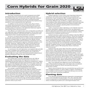 Corn Hybrids for Grain 2020