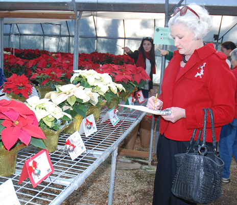 Poinsettia Open House