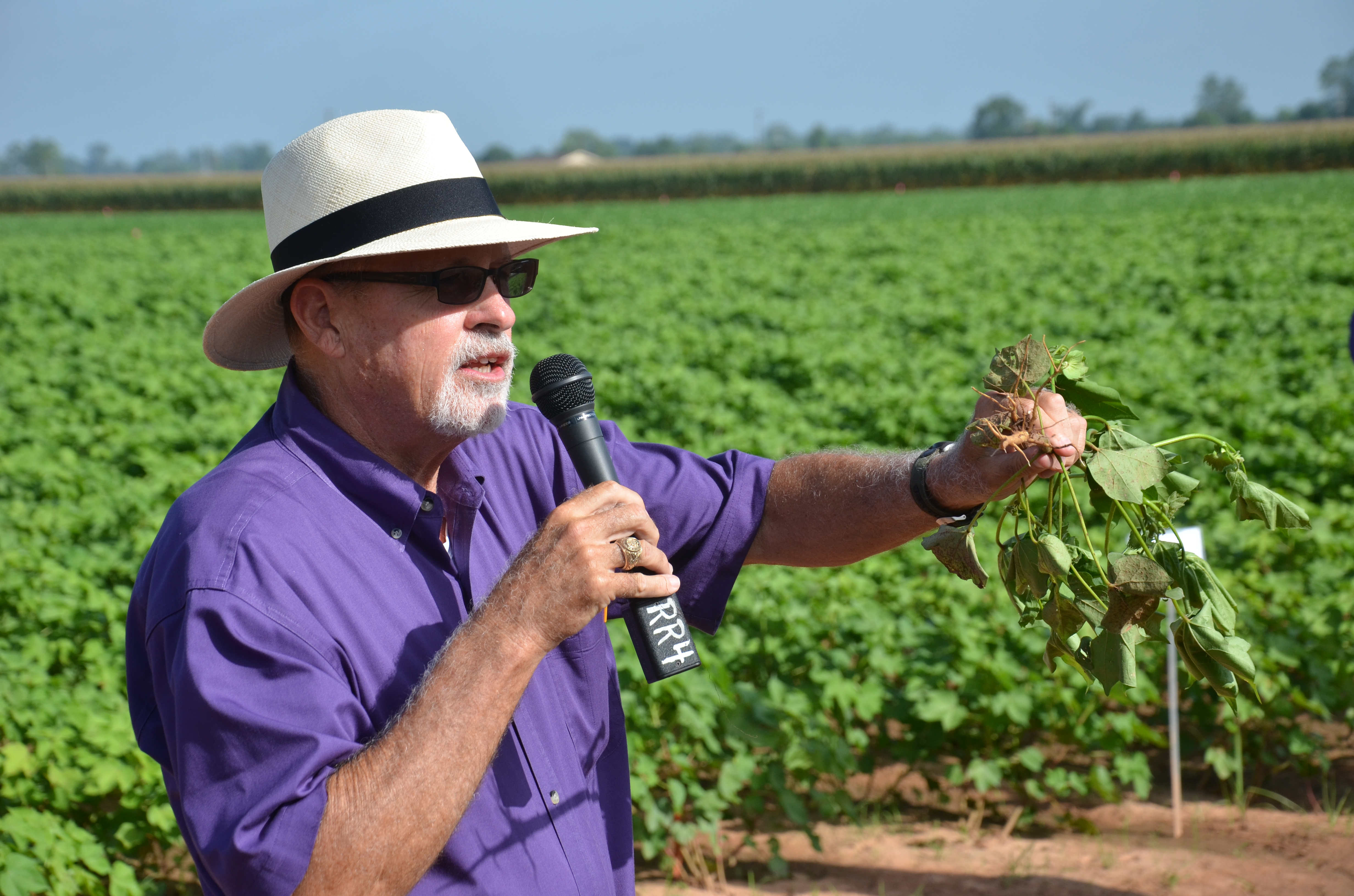 Farmers hear Louisiana crops still have good potential