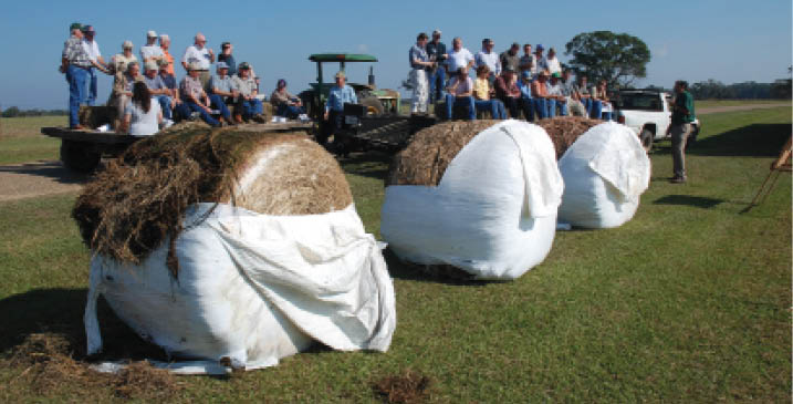 Photo of the bale silage system