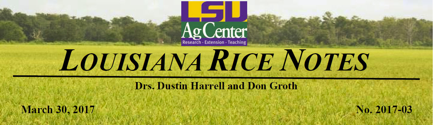 2017 Louisiana Rice Field Notes #3