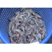 Louisiana shrimpers sell to online customers